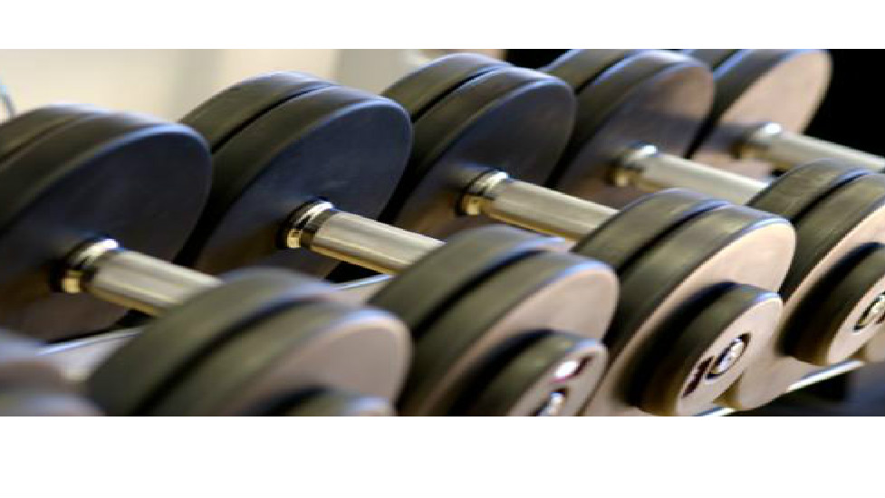 Looking for a career in the Fitness industry?